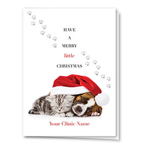 Veterinary Holiday Cards - Christmas Cuddle