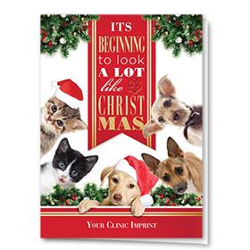 Holiday Card-Looks Like Christmas