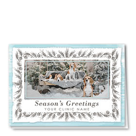 Veterinary Holiday Cards - Wintery Trio