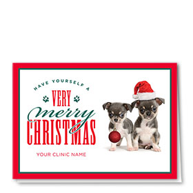 Veterinary Holiday Cards - Cheerful Duo