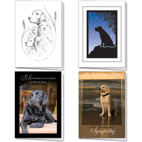 Full-Color Dog Sympathy Cards Assortment Pack - 12