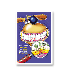 3-Up Veterinary Postcards - Do A Dental Today