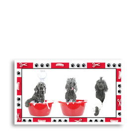 3-Up Veterinary Postcards - Who's Pampered
