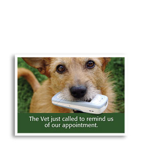 3-Up Veterinary Postcards - Vet Called