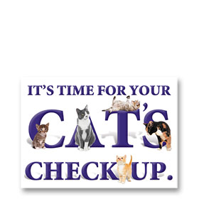 3-Up Veterinary Postcards - Cat's Checkup