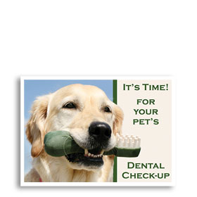 3-Up Veterinary Postcards - Dental Bone