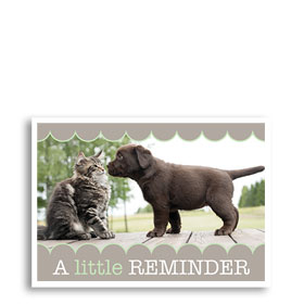 3-Up Veterinary Postcards - Nosey Reminder