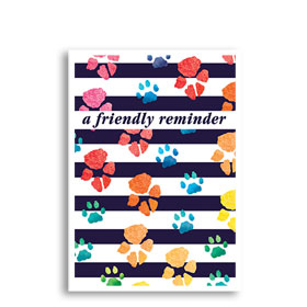 3-Up Veterinary Postcards - Rainbow Print