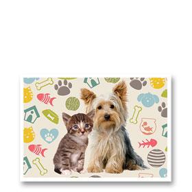 3-Up Laser Veterinary Postcards - Fuzzy Buddies