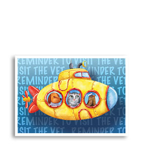 3-Up Veterinary Postcards - Sea Reminder