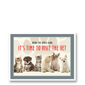 3-Up Veterinary Postcards - Reminder Gang