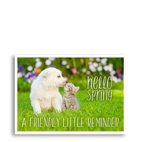 3-Up Laser Veterinary Postcards - Hello Spring