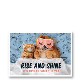 3-Up Laser Veterinary Postcards - Sleep Mask