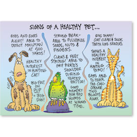 Standard Veterinary Reminder Postcards - Sign of Healthy Pet