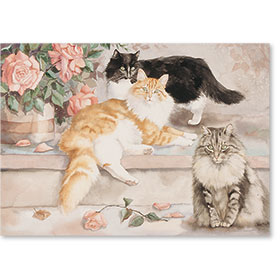 Standard Postcards-Rudy & Friends
