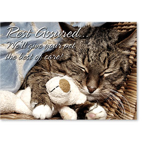 Standard Veterinary Reminder Postcards - Rest Assured
