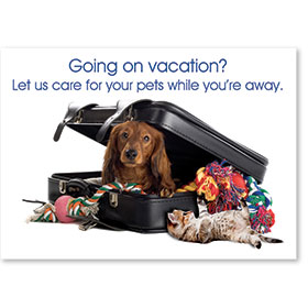 Standard Veterinary Reminder Postcards - Pet Suitcase
