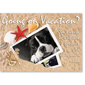 Standard Veterinary Reminder Postcards - Going on Vacation?