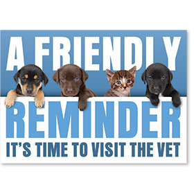 Standard Veterinary Reminder Postcards - Reminder Quartet