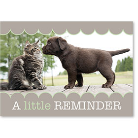 Standard Veterinary Reminder Postcards - Nosey Reminders