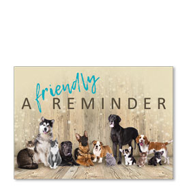 Standard Veterinary Postcards - Reminder Crew