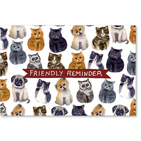 Standard Veterinary Postcards - Tiny Friends