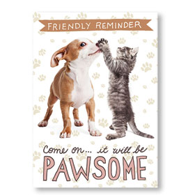 Standard Veterinary Postcards - Pawsome Duo