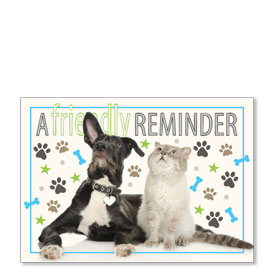 Standard Veterinary Postcards - Dog and Cat