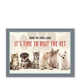 Standard Veterinary Postcards - Reminder Gang