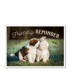 Standard Veterinary Postcards - Little Nibble