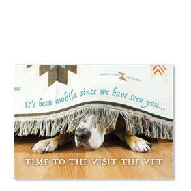 Standard Veterinary Postcards - Hide and Seek