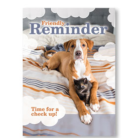 Standard Veterinary Reminder Postcards - Out of Bed