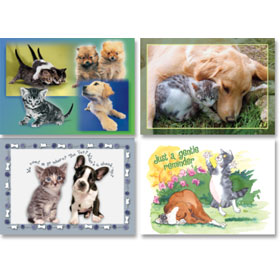 Veterinary Reminder Postcards Assortments - Laser Pkg 13