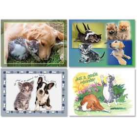 Personalized Veterinary Reminder Postcards Assortment - PC Pkg 01