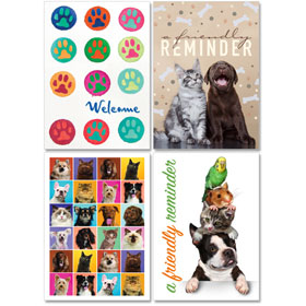Personalized Veterinary Reminder Postcards Assortment - PC Pkg 12