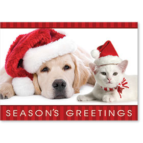Veterinary Holiday Postcards - Santa's Helpers