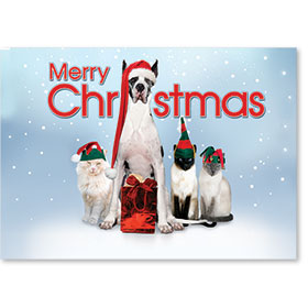 Veterinary Holiday Postcards - Santa and Elves