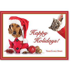Veterinary Holiday Postcards - Stocking Wonder