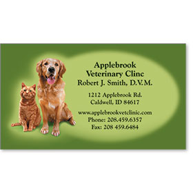 Full-Color Veterinary Magnetic Business Cards - Reminder Duo