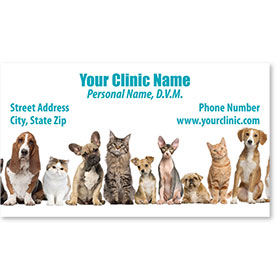 Full-Color Veterinary Magnetic Business Cards - Friendly Line-Up