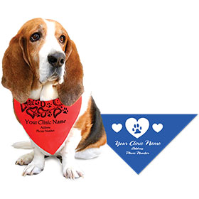 Small Triangle Personalized Pet Bandannas