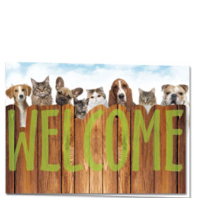 Veterinary Welcome Cards - Peekaboo Welcome