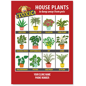 """Informational Magnets - Toxic Plants - 4"""" x 5.5"""""""