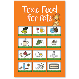 """12"""" x 18"""" Informational Poster - Toxic Foods for Pets"""