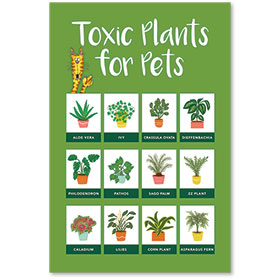 """12"""" x 18"""" Informational Poster - Toxic Plants for Pets"""
