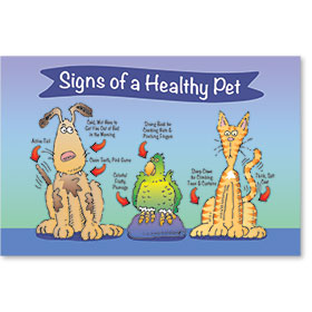 "12"" x 18"" Informational Poster - Signs of a Healthy Pet"