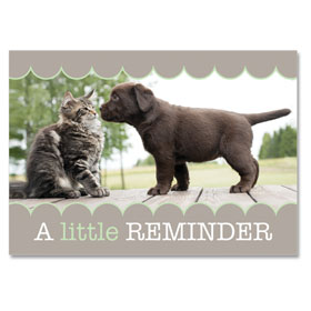 4-Up Laser Veterinary Postcards - Nosey Reminders