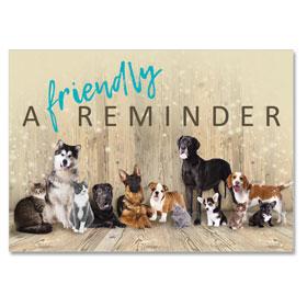 4-Up Laser Veterinary Postcards - Reminder Crew
