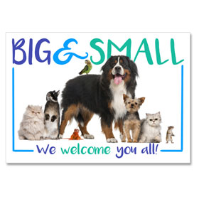 4-Up Laser Veterinary Postcards - Furry Family