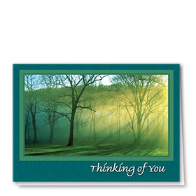 Full-Color Medical Sympathy Cards - Luminous Forest
